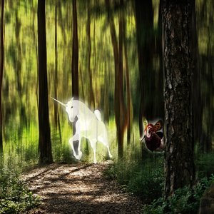 Unicornio en bosque